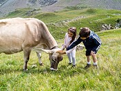 Children cherish a cow in the mountains