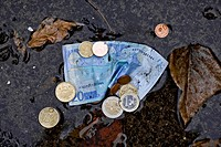 A twenty euro banknote and euro coins in a puddle