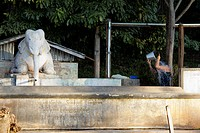 A person washing hair with a bucket next to an elephant statue, Heho, Burma