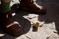 A duckling near the feet of a man (thumbnail)