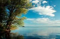 Austria, Europe, Vorarlberg, landscapes, Rheinholz, Rheindelta, Sunrise, Bodensee, Lake Constance, lake, nature, water, clouds, tree