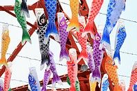 Fish style paper lanterns