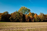 rural landscape of the Veneto, Italy