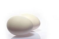 Studiot shot of two eggs