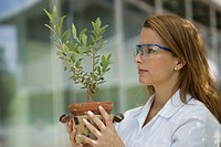 Europe, Germany, North Rhine Westphalia, Duesseldorf, Young student with plant (thumbnail)