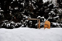 Germany, Bavaria, Fallen office chair in snow with hedge