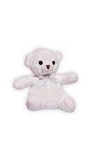 Teddy bear, close_up