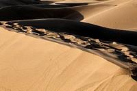 Sanddünen von Maspalomas auf den kanarischen Inseln von Spanien