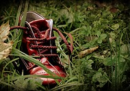 Red shoe in a forest