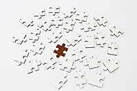 Brown jigsaw standing out amongst white pieces