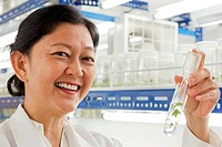 Dr Doreen Goh, teak cloning researcher, YSG Biotech, Sabah Foundation Group, Kota Kinabalu, Sabah, Malaysia. She is holding a test tube containing mic...