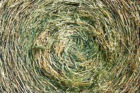 A close_up shot of a large bail of hay