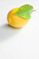 lemon with a leaf