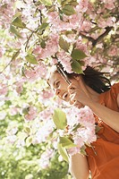 Woman in a cherry tree