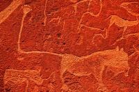African petroglyph