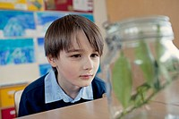 Young school boy 6_7 looking at plant sample placed in jar
