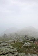 Appalachian Trail _ Foggy conditions along Franconia Ridge Trail during the summer months. Located in the White Mountains, New Hampshire USA Notes: