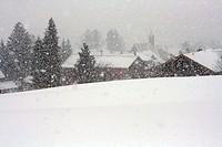 Schneesturm im Allgäu