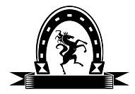 Horseshoe lucky symbol
