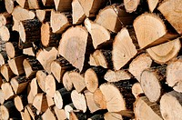 Closeup Woodpile