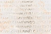 closeup of ancient latin text