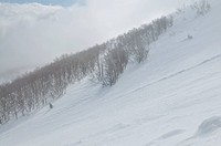 beautiful winter season landscape with ice snow and hard winds