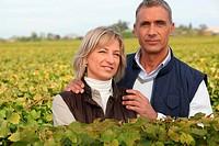 couple of viticultors amid vineyards