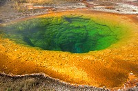 Morning Glory Pool, Upper Geyser Basin,Yellowstone National Park, Wyoming, USA