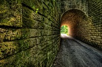 Road tunnel with moss covered walls