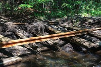 Pemigewasset Wilderness - Abandoned rail-line deep in the Pemigewasset Wilderness in Lincoln, New Hampshire USA  The East Branch & Lincoln was a loggi...