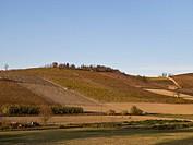 colline, grazzano badoglio, piemonte, italia