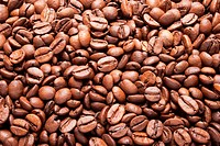 Brazil coffee grain, seed