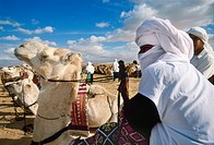 International Festival of the Sahara  Douz  Southern Tunisia.