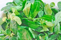 Corn salat