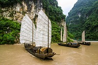 Traditional sampan boats on the Yangtze River