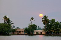 the sun setting behind palm trees and homes in the Kerala backwaters