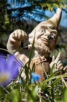 Garten dwarf