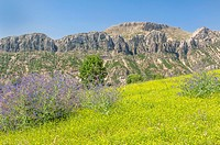 Landscape, Adiyaman Province, East Turkey, Turkey