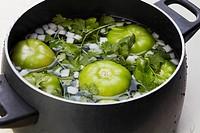Tomatillos, Onion and Cilantro Soaking in a Pot
