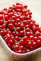 Redcurrants in plastic punnet