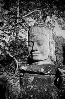 Head of gate guardian, Angkor, Cambodia