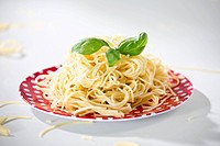Germany, Plate of spaghetti with basil, close_up