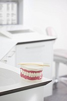 Germany, Exhibition dentures with toothbrush in dental office
