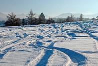 Frische Spuren im Schnee
