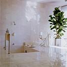 Marble_Tiled Bathroom with Sunken Shower