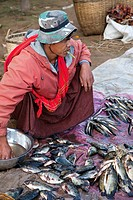 Myanmar, Burma  Man Selling Fish at Local Market, Inle Lake, Shan State