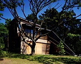A contemporary, angled building in a setting of sculptural trees.