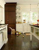 White kitchen with dark wood floor and pantry cabinet