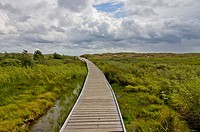 Wooden footbridge to beach, Bornholm Island, Denmark