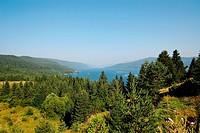 Dam Dospat in Rodopi mountain , Bulgaria